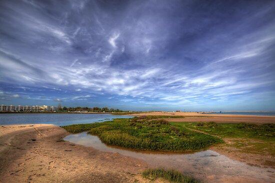 Sand Bar Beach  by manateevoyager