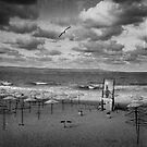 Last Summerend 2012 by Stefan Kutsarov