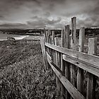Sea Ranch Fence by Jon Yager