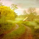 Hahndorf, Adelaide Hills SA by Mark Richards