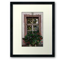 Window Box Reflections Framed Print