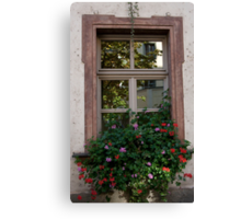Window Box Reflections Canvas Print