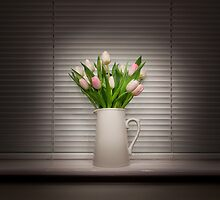 Tulip Still Life by Gethin Thomas