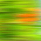 Jungle Meditation 0905a by hdamm