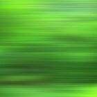 Jungle Meditation 0905b by hdamm