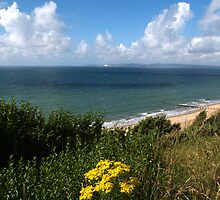 Poole Bay by Chris Day