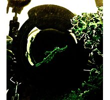 Camera Trapped Ghost & Ghoulin Photographic Print