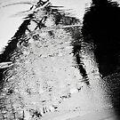 Shadow of the Pyramid by Nicole Doyle