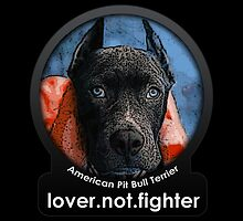 American Pit Bull Terrier by Galen Valle