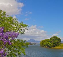 Mount Warning by sarcalder
