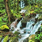WATERFALL AT TREMONT by Chuck Wickham