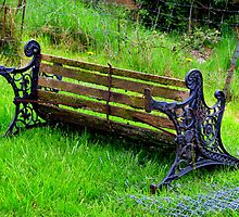 Retired Bench....Coquille, Oregon by trueblvr