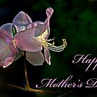 Mother's Day Card - Azalea by cclaude