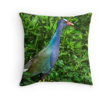 Purple Gallinule Throw Pillow