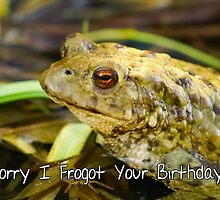 Sorry I Forgot Your Birthday Belated Birthday Card by Moonlake