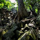 Ruins of Beng Mealea temple, Cambodia by Michael Treloar