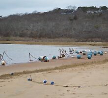 Menemsha Pond buoys  by chadbcurtis