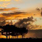 Sunset on the West Coast of New Zealand by Mick Kupresanin
