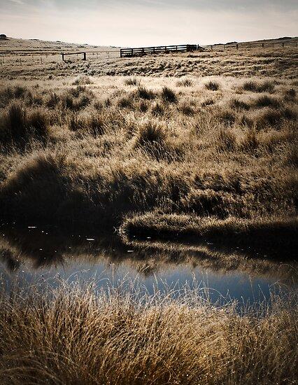 Mountain High Country - New Zealand by Mick Kupresanin