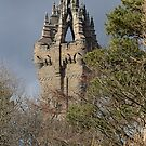 Wallace Monument by Donald  Stewart