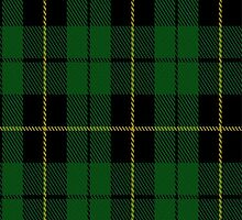 02054 Wallace Hunting Clan/Family Tartan Fabric Print Iphone Case by Detnecs2013