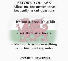 Three kilt FAQ's (wales edition) by Soup460