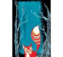 Woodland Fox Photographic Print