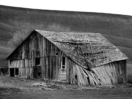 Abandoned In Idaho by trueblvr