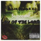 Supreme Law of the Land by icuoverall