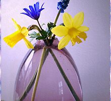 First Spring Flowers by walstraasart