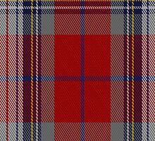 02058 Warden Clan/Family Tartan Fabric Print Iphone Case by Detnecs2013