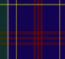 02060 Warren Wilson College Tartan Fabric Print Iphone Case by Detnecs2013