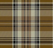 02067 Waverly Check Tartan Fabric Print Iphone Case by Detnecs2013
