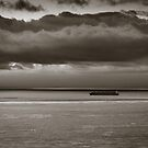 grey waters by maria miller