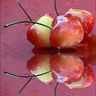 Rainier Cherries Three by paintingsheep