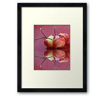 Rainier Cherries Three Framed Print
