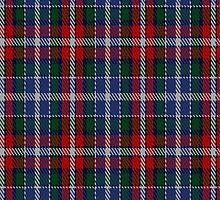 02121 Wombles #2 Tartan Fabric Print Iphone Case by Detnecs2013