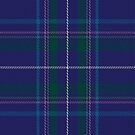 02143 Visit Scotland Tartan Fabric Print Iphone Case by Detnecs2013