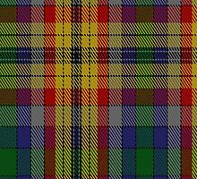 02147 Ville de Beauport District Tartan Fabric Print Iphone Case by Detnecs2013