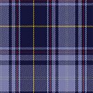 02148 Vilaro-Thomas Tartan Fabric Print Iphone Case by Detnecs2013