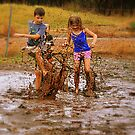 a day in the mud by lilli robertson