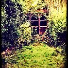The Shed at the End of the Garden by SuzyPhoto