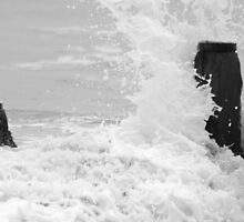 Wave Crashing on Sea Breakers by Marian Sedwell