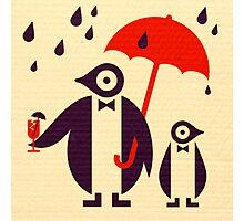 Penguins Keeping Dry Photographic Print