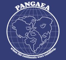 Pangaea T-Shirt by Dan Meth