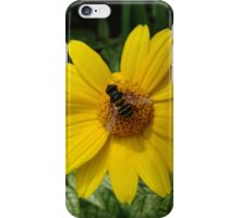 Loraine Sunshine ~ Heliopsis Helianthoides and the Bee iPhone Case/Skin