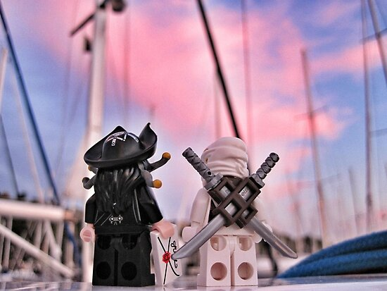 The Captain invites the White Ninja to the Party by bricksailboat