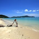 Driftwood on Panwa Beach, Phuket by Kevin Hellon