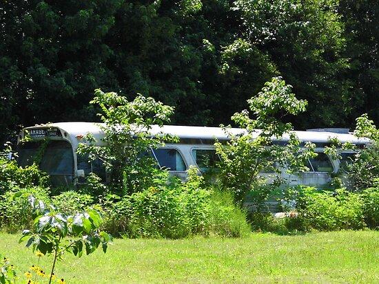 Old Bus by WildestArt