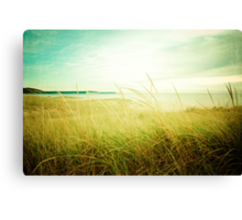 September at the Beach Canvas Print